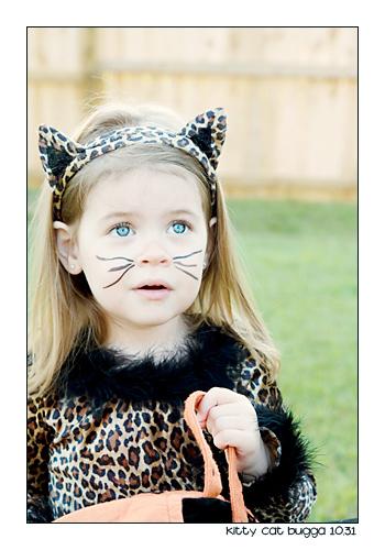 Kittycatbugga