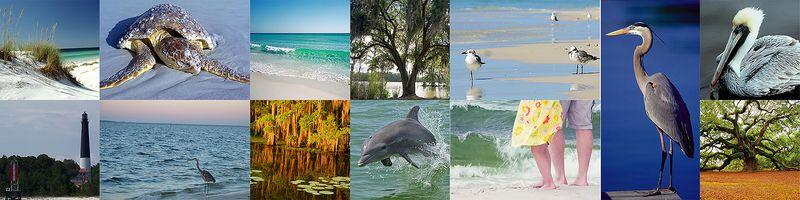 Gulfreliefinspirationmosaic
